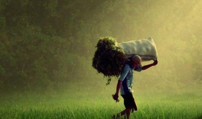 Perilaku Taat, Kompetisi dalam Kebaikan, dan Etos Kerja